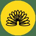 noun_flexible_1325439 (1)